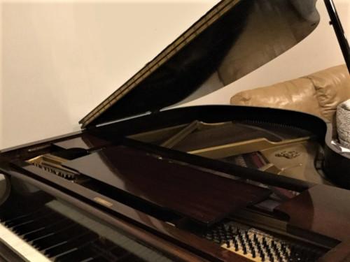 Shiny grand piano